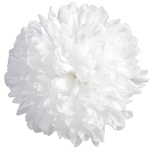 "6 1/4"" White Homecoming Mums"