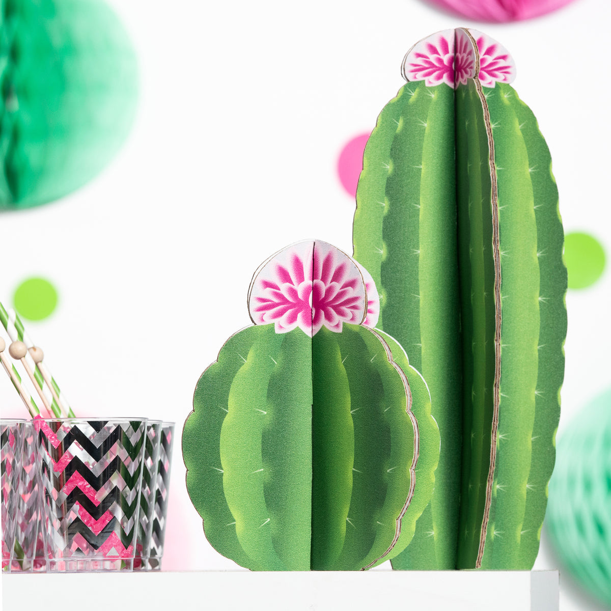 9 in. to 1 ft. 6 in. Slotted Cactus Centerpieces