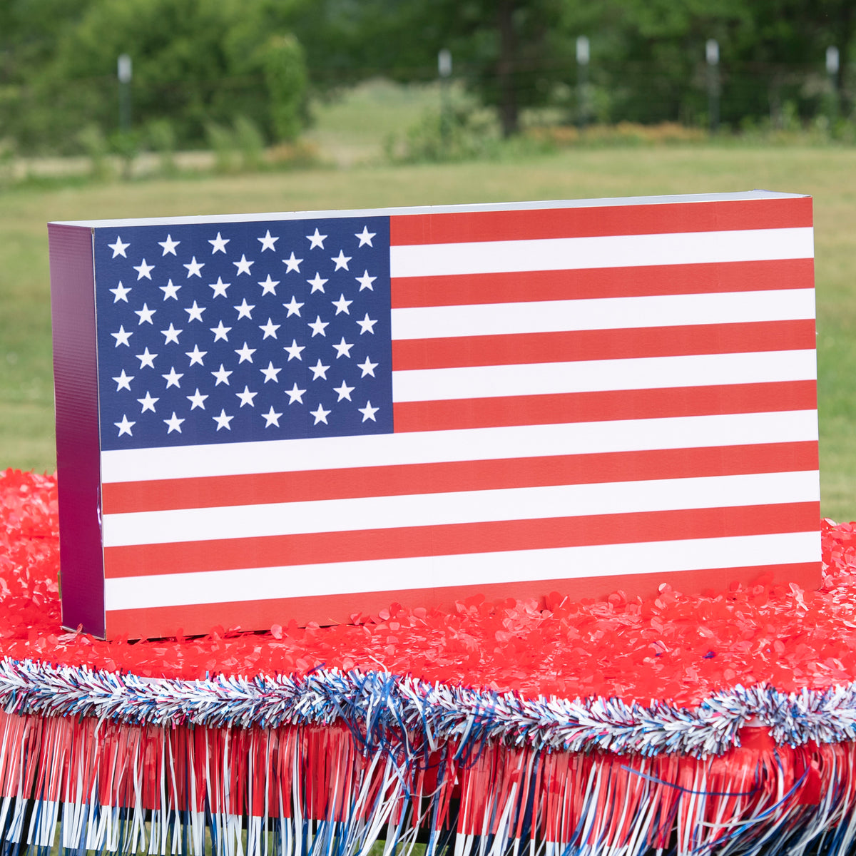 2 ft. 6 in. American Flag Parade Kit