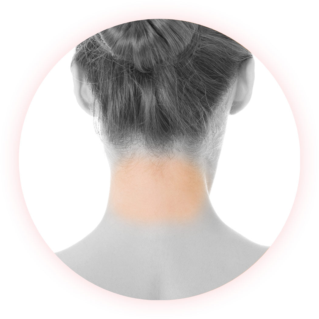 Neck (back) – Series of 6