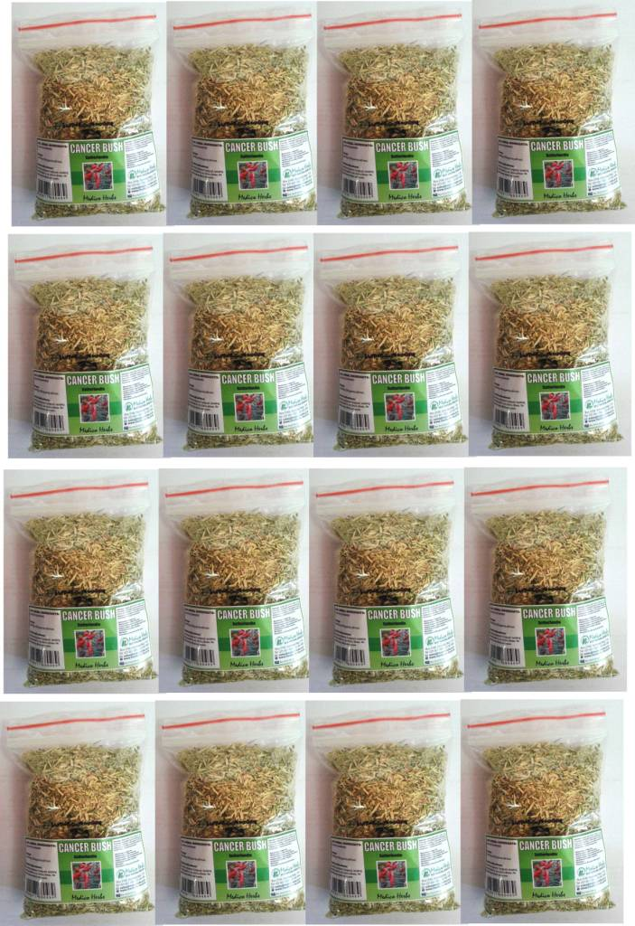 Cancer Bush Tea Sutherlandia Frutescens bulk pack 20 x 50gr.