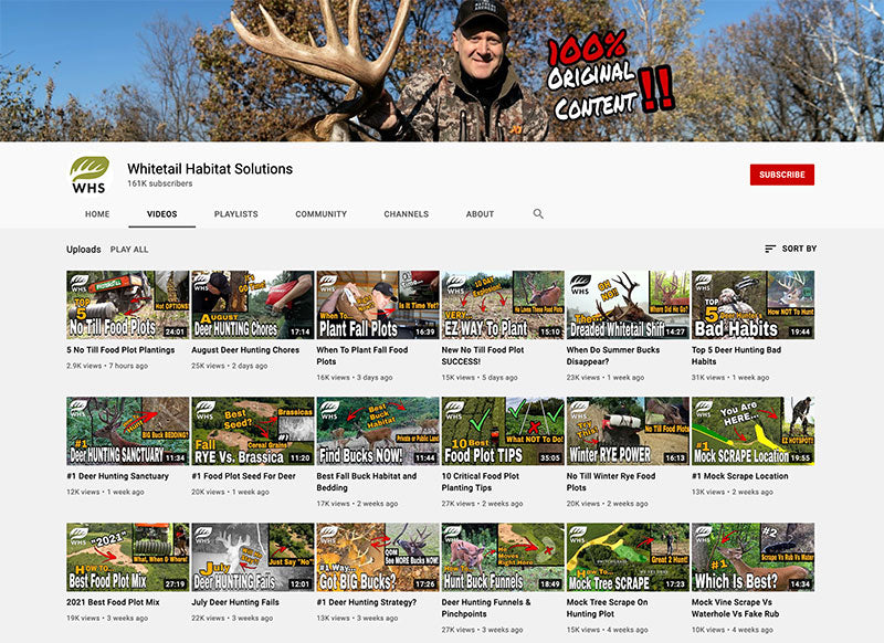 youtube channel blog