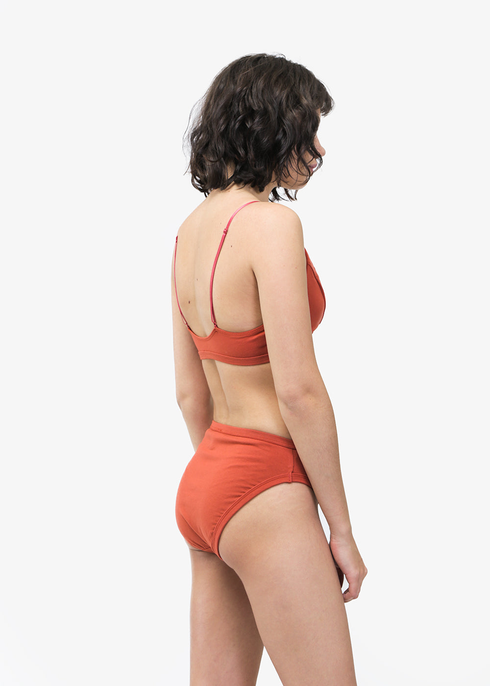 Rosa Brief in Goji