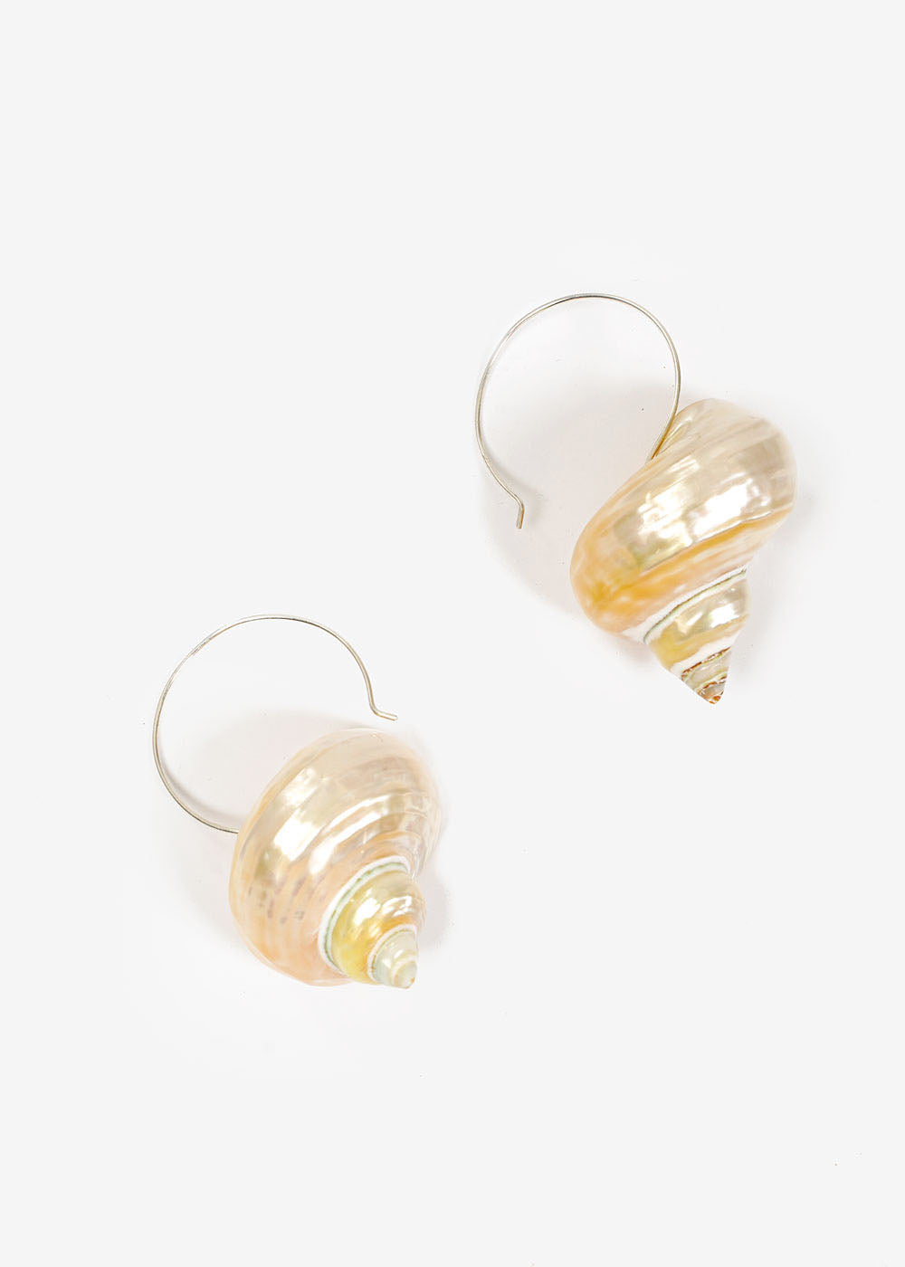 LUINY Turbo Shell Earrings — Shop sustainable fashion and slow fashion at New Classics Studios