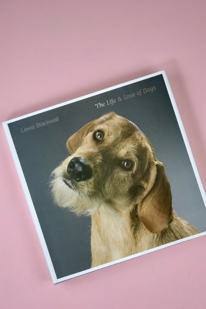The Life and Love of Dogs coffee table book Lewis Blackwell Pipe and Row