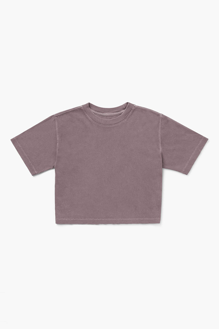 Richer Poorer relaxed crop short sleeve tee plum smoke | Pipe and Row