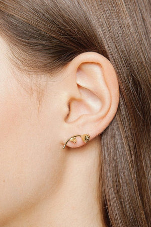 handcrafted rose earrings 14k gold wolf circus | pipe and row