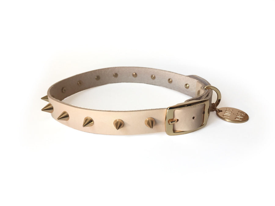 spike leather dog collar gold nice digs | pipe and row