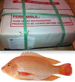 Red Tilapia 4kg