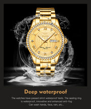 Men's Luxury Automatic Watch