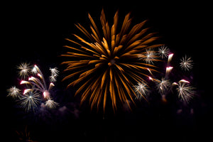 Firework tips for dogs