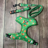 Inquisitive Fox Harness set