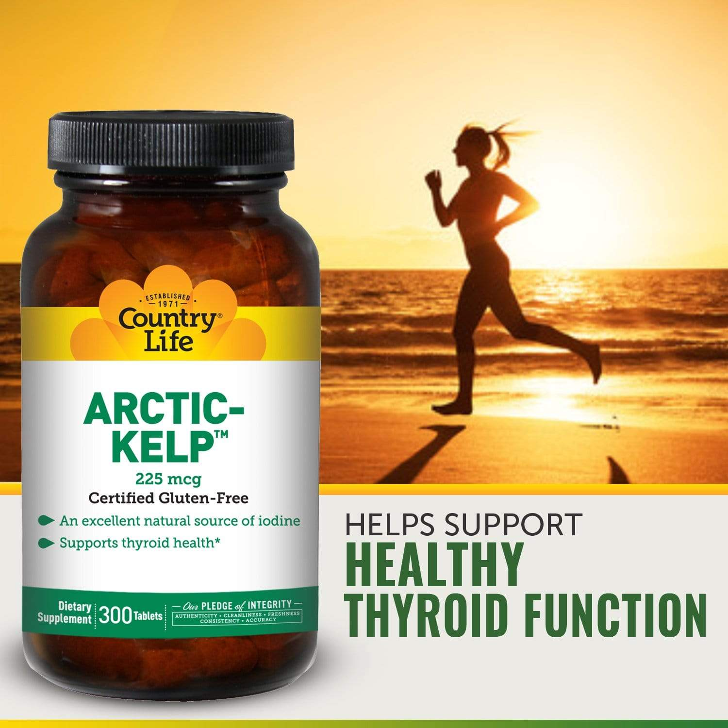 Country Life Artic Kelp 225 Mcg -- 300 Tablets