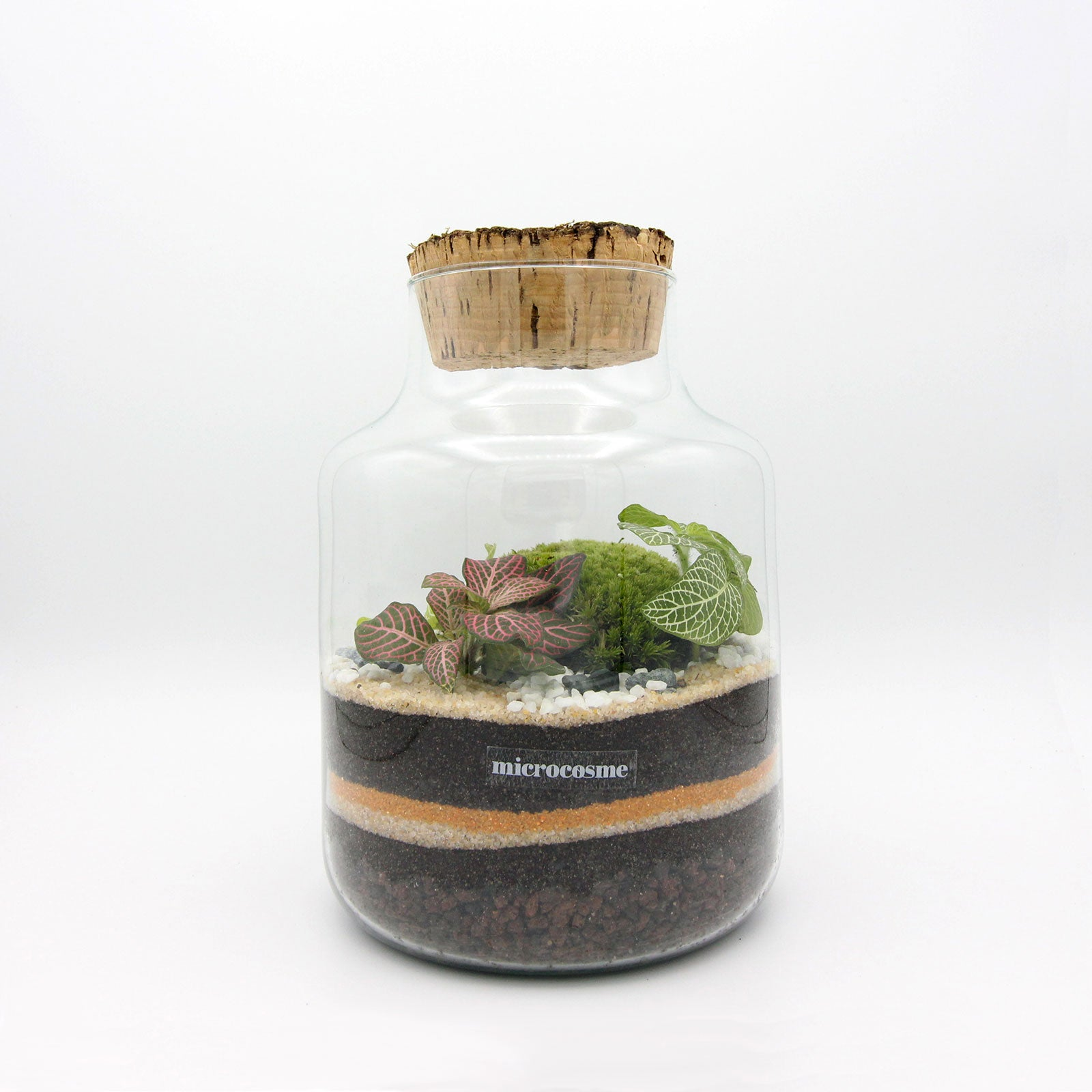 Terrarium Célien Junior