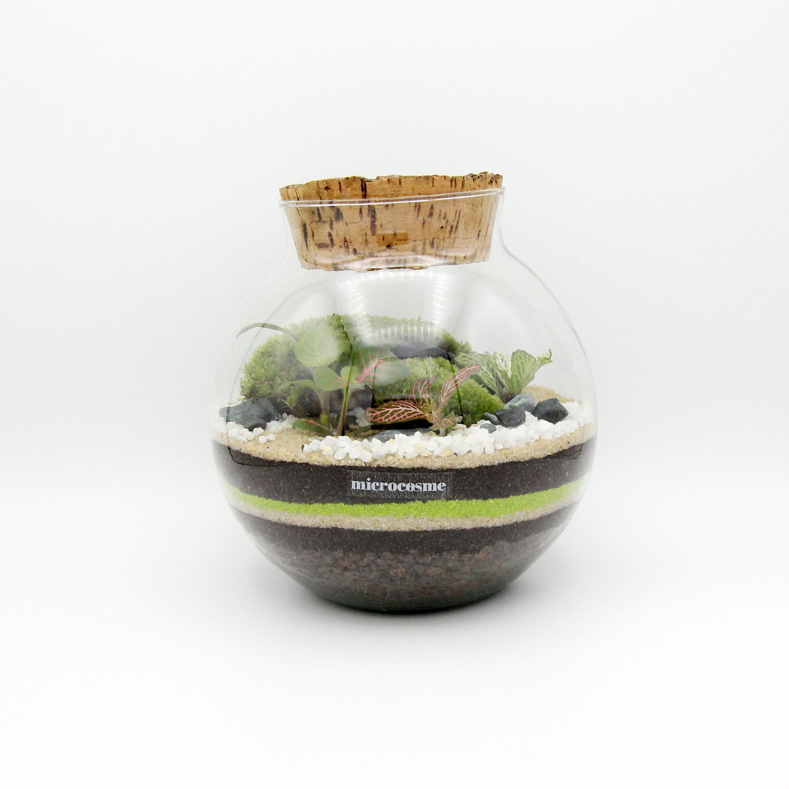 Terrarium Octave Junior