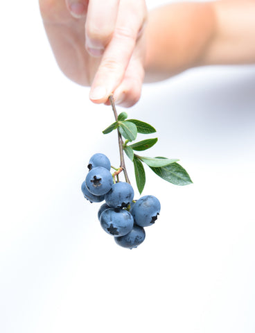 Blueberries are rich in antioxidants and vitamins