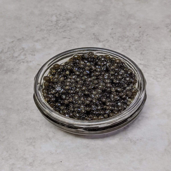 Sustainable Siberian Sturgeon Caviar