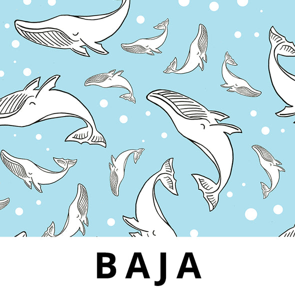 BAJA Fabric - Laminated Cotton - by the yard