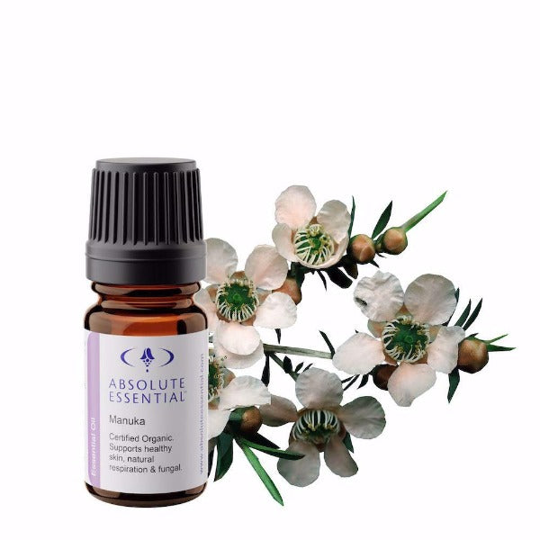 Absolute Essential Manuka Essential Oil (Organic) with Manuka Flower