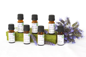 Absolute Essentials Chakra Oils Box Set