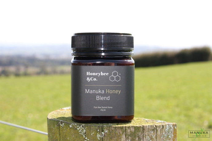 HONEYBEE & CO Mānuka & Rewarewa Honey Blend - 250g