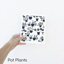 SPRUCE. A super star eco friendly dishcloth doing good things for the planet. In Pot Plants Design.