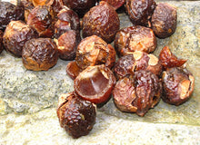 SoapNuts (Sapindus Mukorossi) Soap Nut Shells  - for Laundry, Bathing, Cleaning