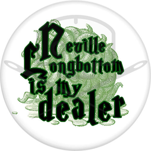 "Harry Potter Dealer 2.25"" Pinback Button"