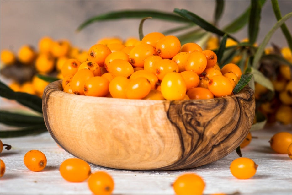 Sea Buckthorn - Overview, History, Uses, Benefits, Precaution, Dosage