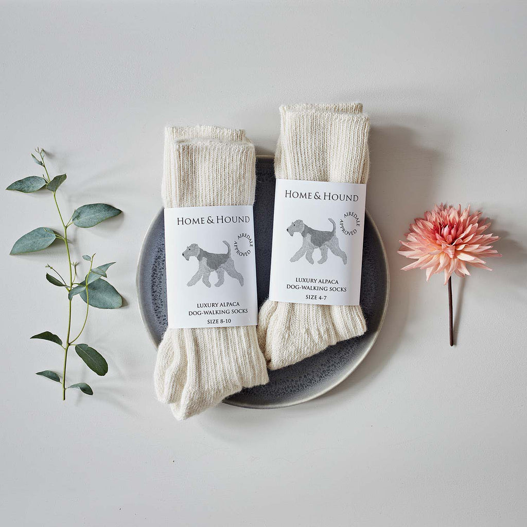 Airedale Terrier Cream Alpaca Walking Socks