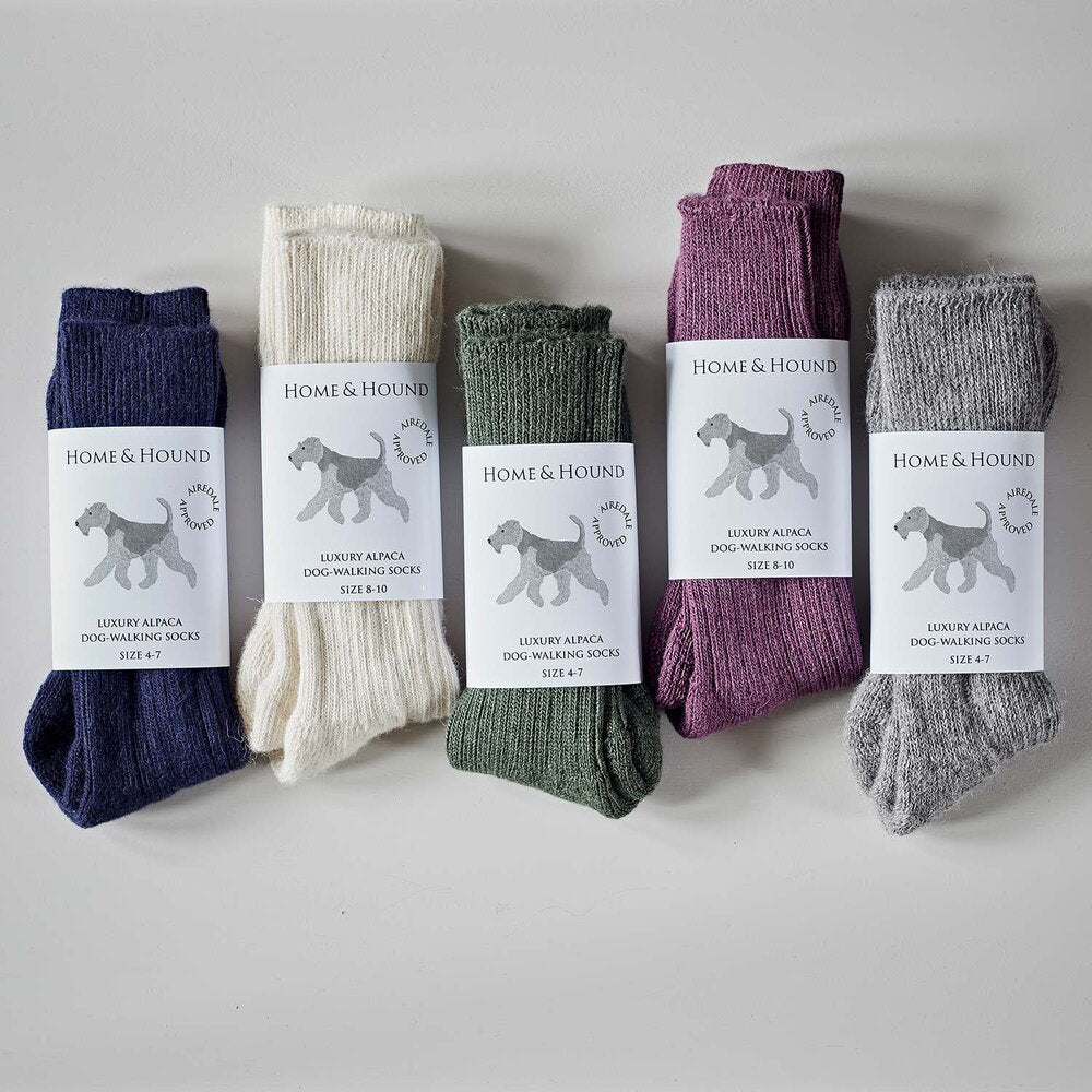 Airedale Terrier Alpaca Walking Socks