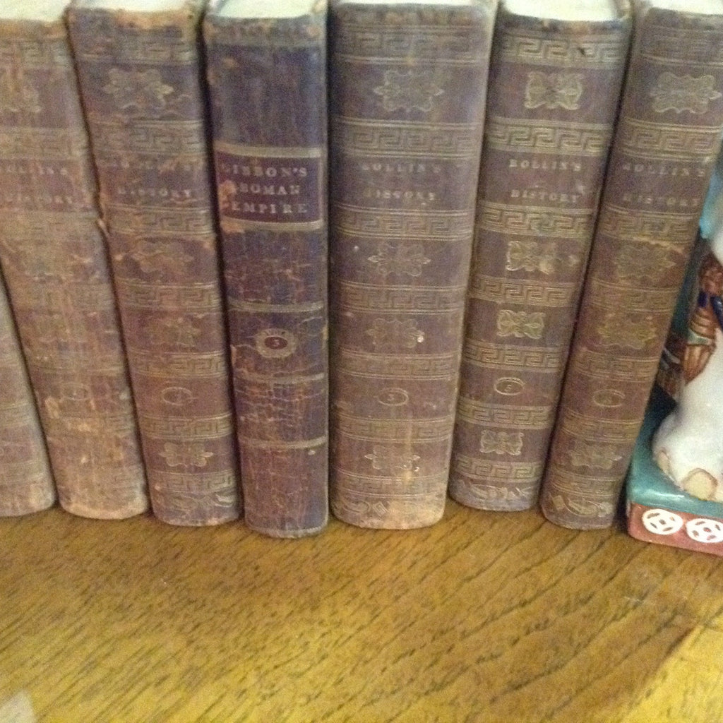 Set of 8 volumes of Rollin Leather books