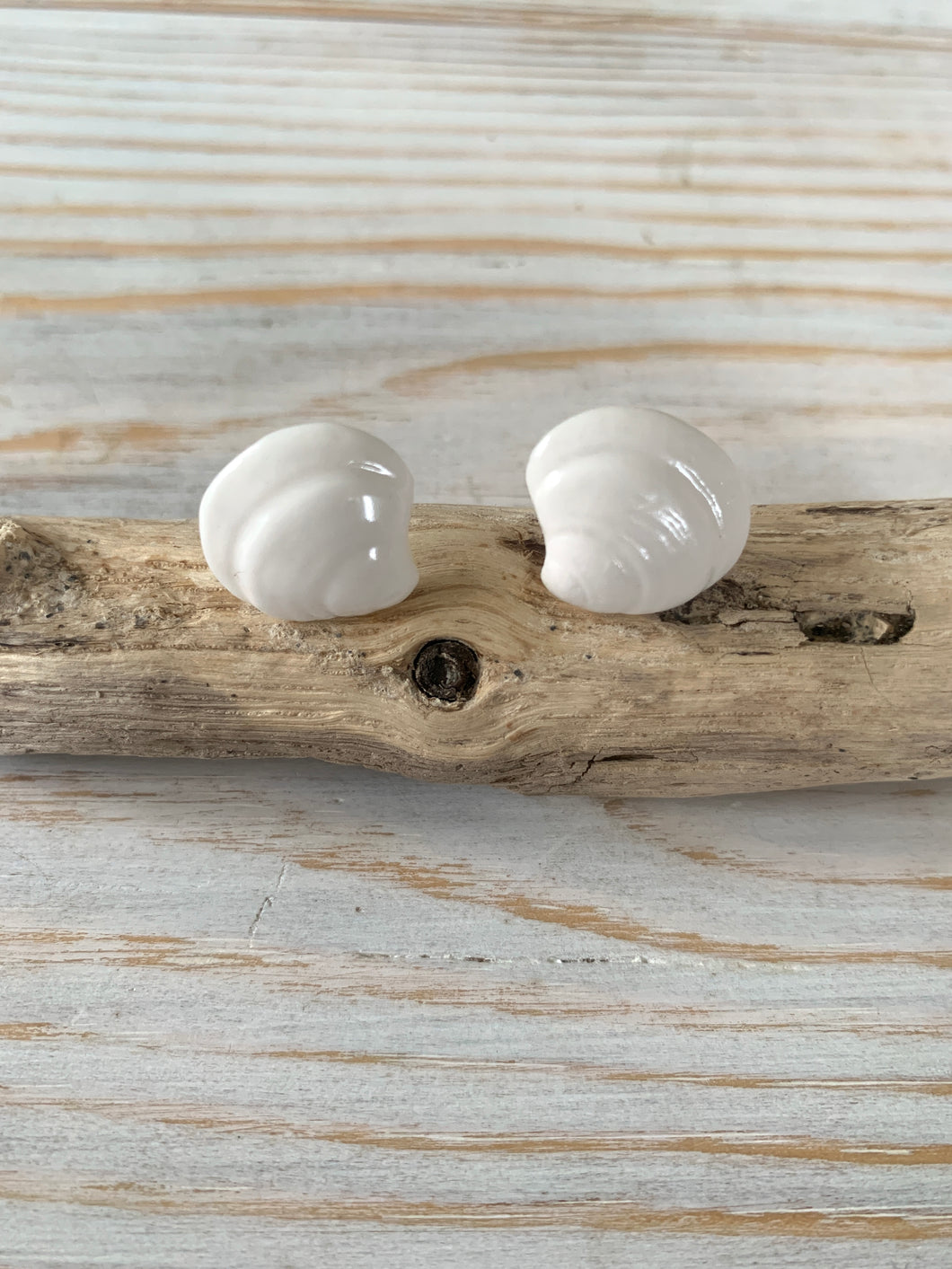 Porcelain clam shell earring studs