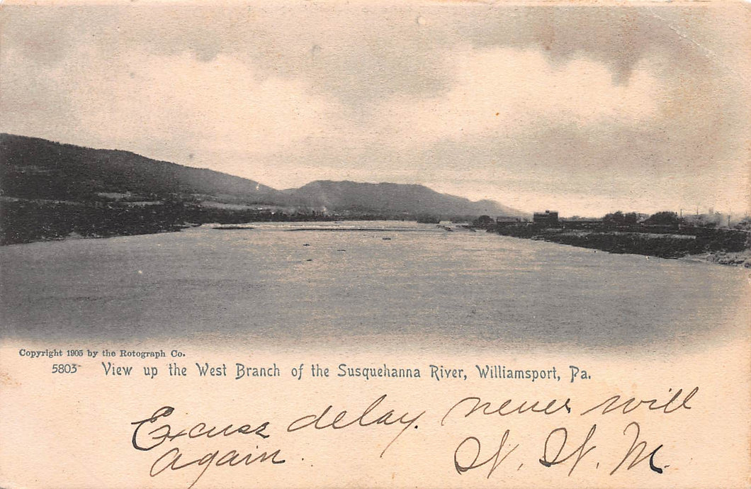 View Up the West Branch of the Susquehanna River, Williamsport, PA., early postcard, used in 1905