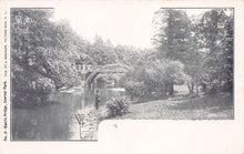 Load image into Gallery viewer, Rustic Bridge, Central Park, Manhattan, New York City, N.Y., early postcard, unused