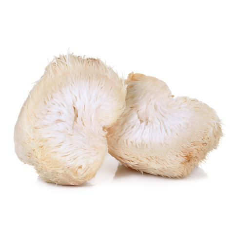 Lion's Mane mushrooms from Hernshaw Farms in West Virginia