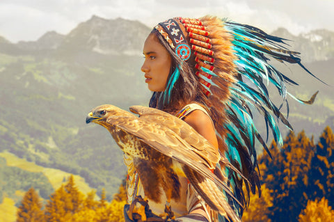 Indian headdresses from different tribes indian for What crafts did the blackfoot tribe make