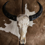 Buffalo Skull - Viking Carving