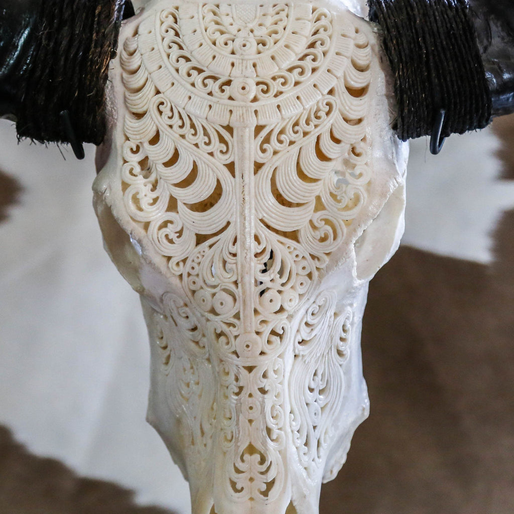 Buffalo Skull - Tribal Carving 1