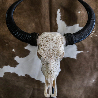 Buffalo Skull - Tribal Carving 3