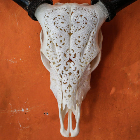 Heart Design Cow Skull Carving
