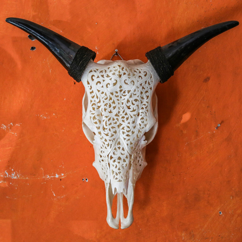 Cow Skull - Tribal 7
