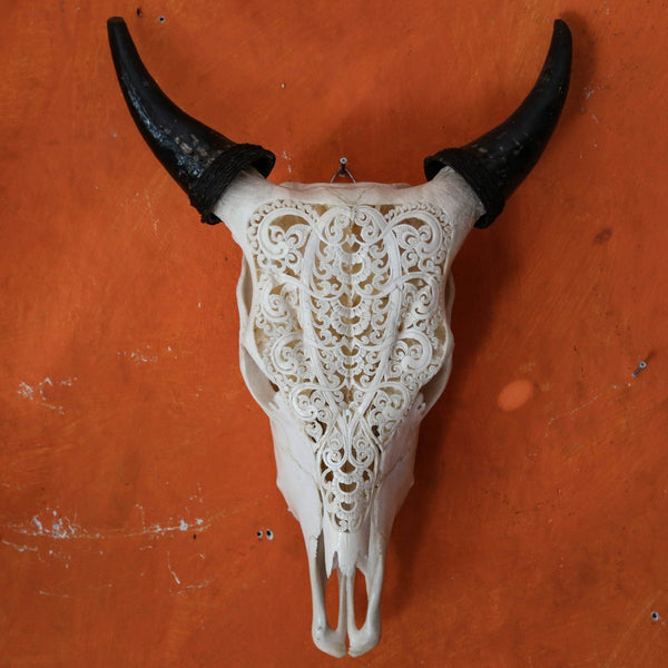 Cow Skull - Tribal 8