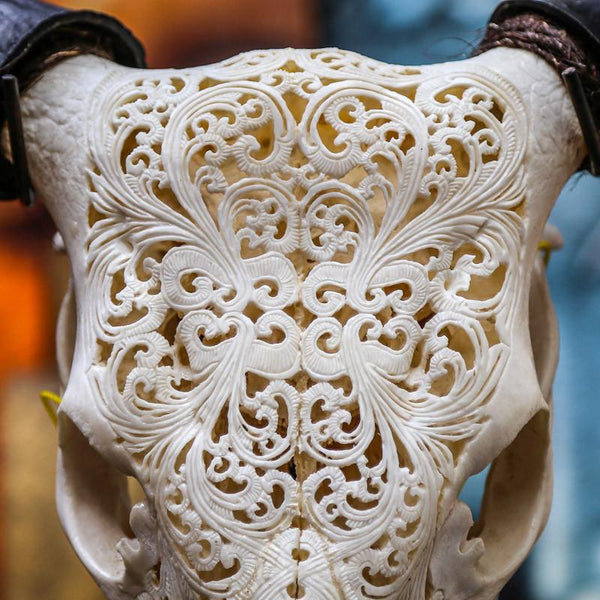 Cow Skull - Tribal 6