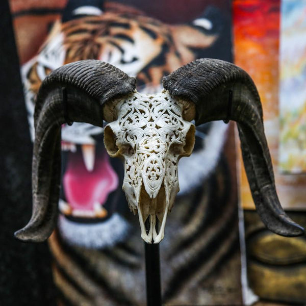 Ram Skull - Tribal #2 Carving