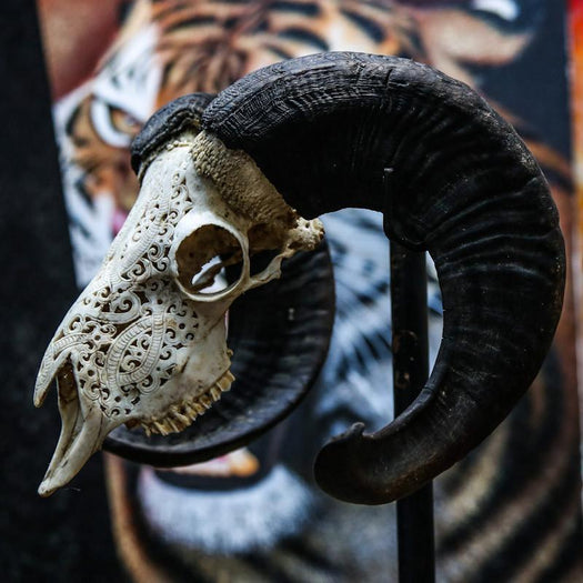 Ram Skull - Tribal #3 Carving