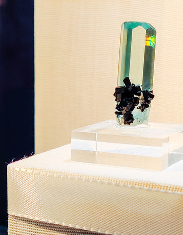 Image of high quality, glass clear aquamarine mineral specimen with black crystals jutting out from the bottom.