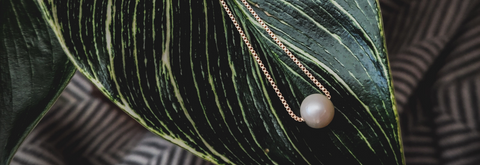 White pearl necklace threaded on gold box chain laying on a plant leaf above a gray and white textured background. Aerial view.