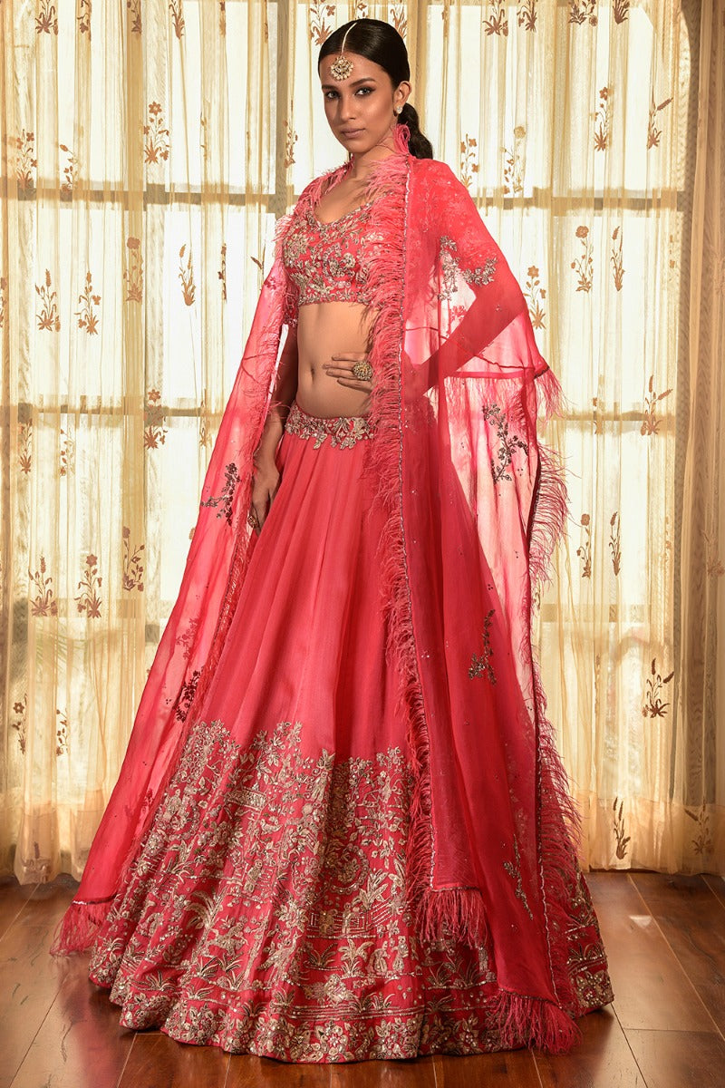 Cedar Wood Organza Lehenga Set With Cape
