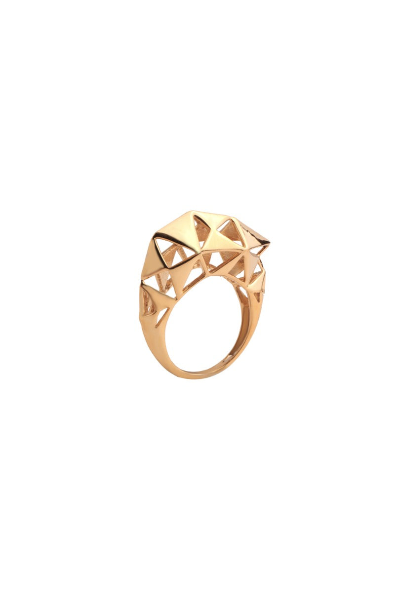 Wild Ones MESHED UP Ring